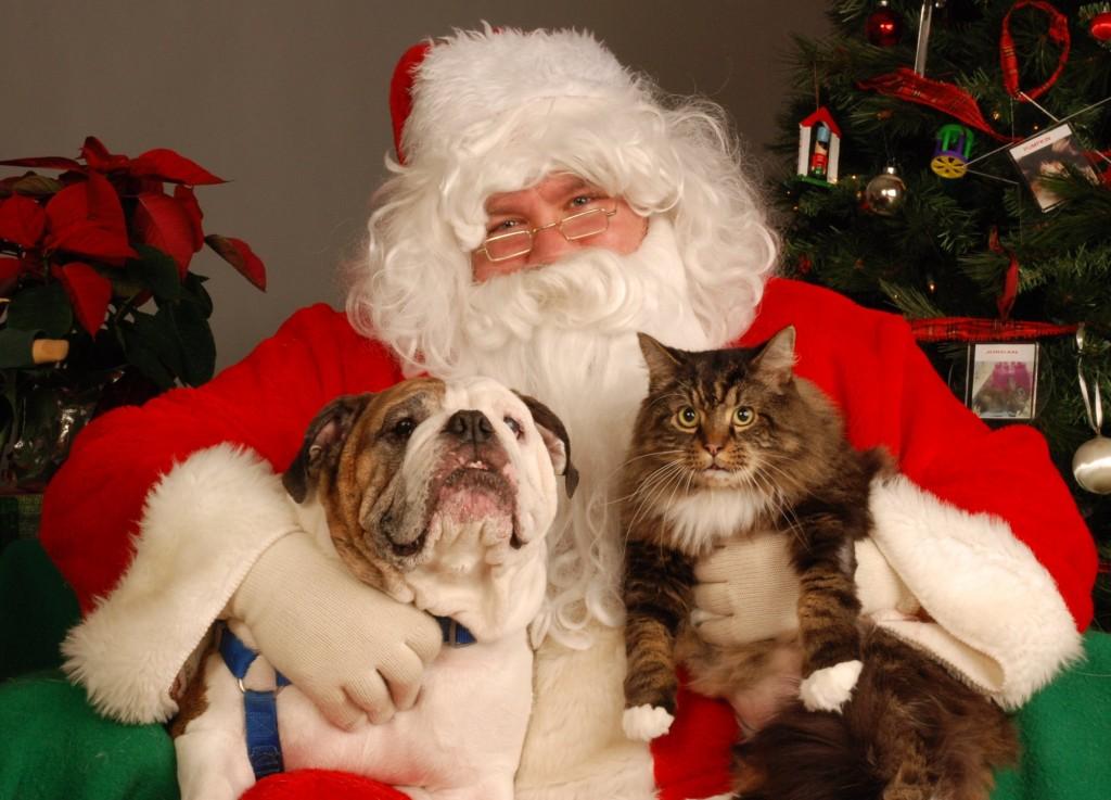 Pet-Photos-w-Santa